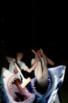 declan & frankie & sharks